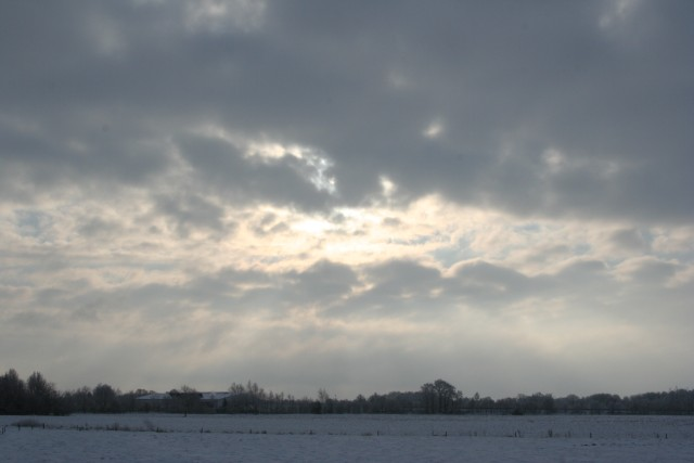 Winter in Moorburg